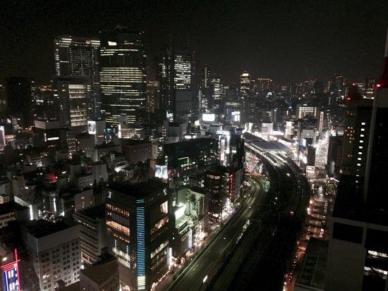 Imperial Hotel Tokyo: photo2.jpg