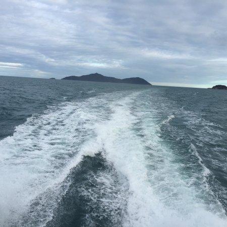 Cairns District, Australien: Sunlover Reef Cruises