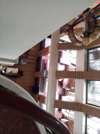 Koala Garden Hostel: 三楼俯视图
