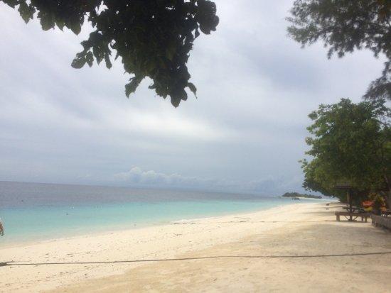 The Reef Dive Resort: 马达京岛 椰树白沙,浪花朵朵,浮潜时遇到的各种热带鱼海龟海兔,干净的岛屿,周到的服务,美到相机也不能还原所见所感,恍若梦境