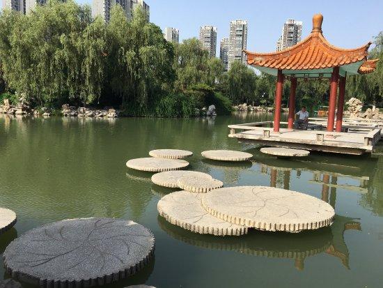 Xiyuan Park: 西苑公园