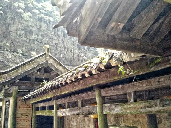 Wulong County, Chine : IMG_20160708_101552424-01_large.jpg