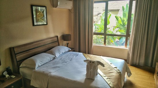 Fogang County, Kina: 非常简约的设计可又不失大气,酒店工作人员在床上用毛巾叠的一只小象非常的可爱,惟妙惟肖眼睛还是用真的树叶来点缀。
