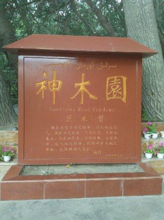 Wensu County 사진