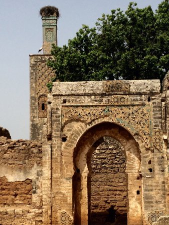 Necrópolis de Chellah: 非常值得去,在废墟中感受历史