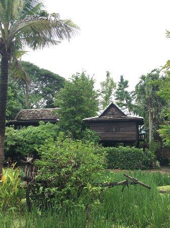 Saraphi, Tailandia: photo4.jpg