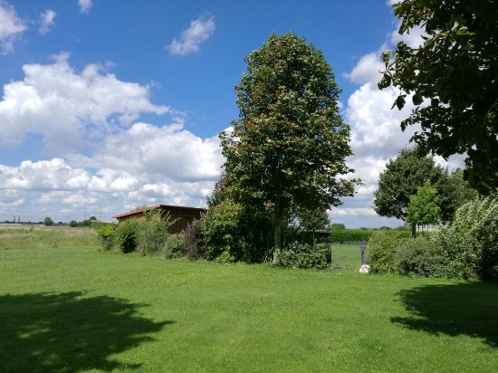 Apartments & Hotel Kurpfalzhof: IMG_20160808_140516_large.jpg
