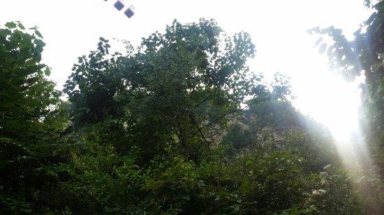 Jindao Canyon Scenic area: 20160814_095619_large.jpg