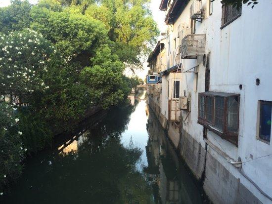 Shiquan Street: 十全街