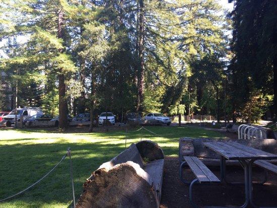 University of California at Santa Cruz: photo2.jpg