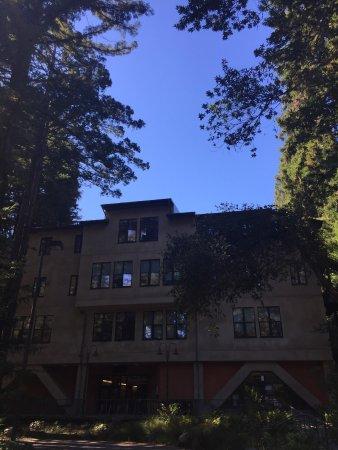 University of California at Santa Cruz: photo3.jpg