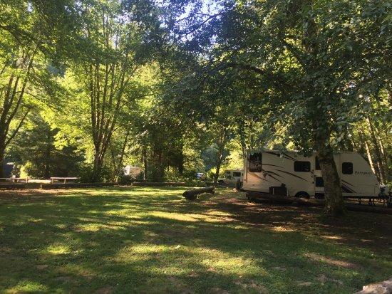 Montesano, WA: 【Dreamers】关于华盛顿州立公园的收费,单次$10/车,一年无限次所有州立公园$30/两辆车,自愿缴费,真是挺厚到的。关键是提供了很多有效的指引,工作人员还特别热情。