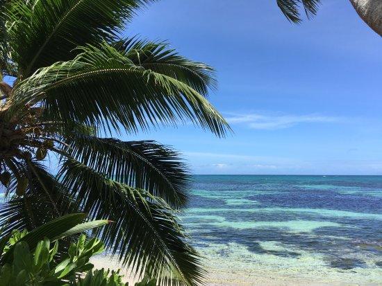 Anse Bois de Rose, Seychelles: photo5.jpg