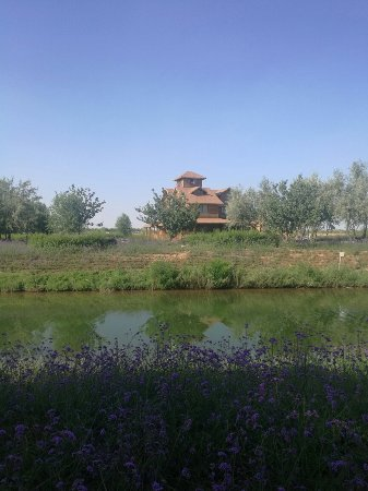 Zhongwei, China: IMG_20160722_173147_large.jpg