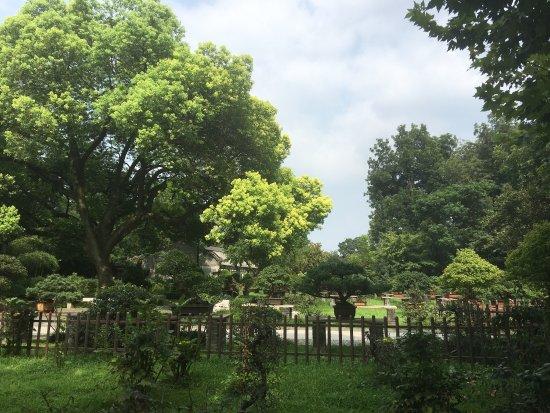 Yangzhou, Chine : 景色很美……虽然一个人转的,但是一点都不恐怖,还有小鸭子,坐在五亭桥上,当风吹过的时候,亭子角上的都会响起来,感觉清爽及啦……一切烦恼似乎都被吹走了……没票120元,虽然有点小贵,但是还是