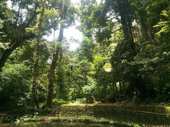 Mt. Dawei Natural Reserve