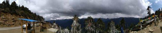 Lulang Forest: 1473254735762_large.jpg