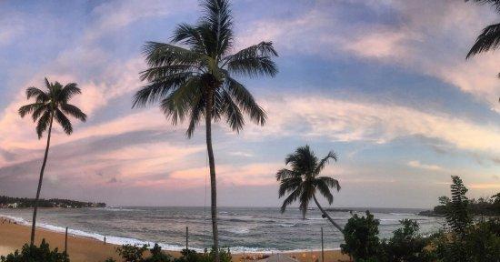 Thaproban Beach House: photo3.jpg
