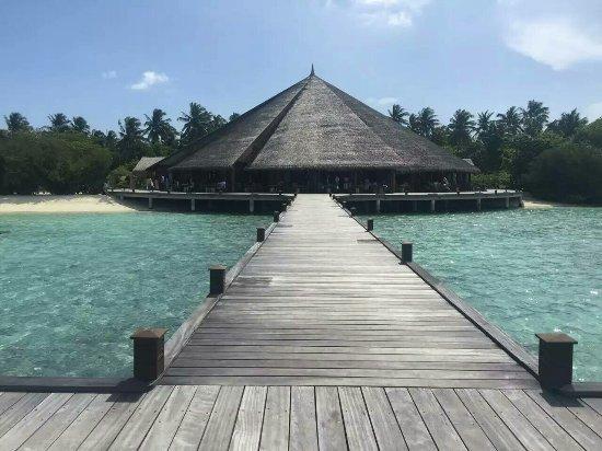Dhonakulhi Island: mmexport1473339987723_large.jpg