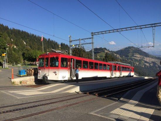 Rigi Kaltbad, İsviçre: photo4.jpg