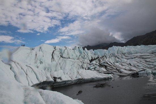 Glacier View, AK: 大冰川