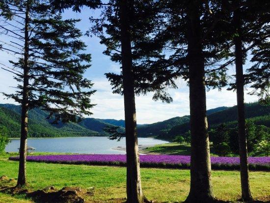 Lake Kanayama Forest Park : Lake Kanayama