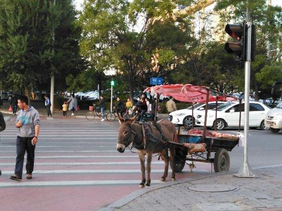 Baotou, China: IMG_20161010_174503R_large.jpg