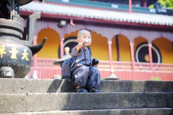 "Ningbo, Chine : 天童禅寺始建于西晋永康元年(300年),距今已有一千七百多年历史,禅宗五大名刹之一,号称""东南佛国""。已经来过多次,一旦再踏入这千年古刹中,快慢由你的脚步和心境决定,这里绝对是最佳的身心洗礼圣"
