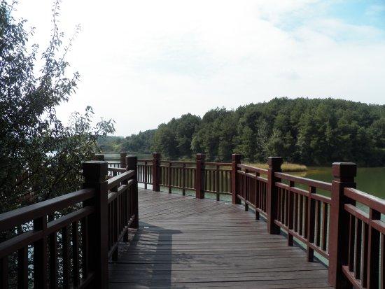 Pingba County Photo