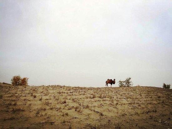 Ying'erli'ke Desert