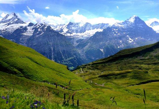 Grindelwald, Suiza: 格林瓦尔德美景
