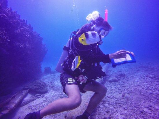 Garapan, Mariana Islands: photo1.jpg
