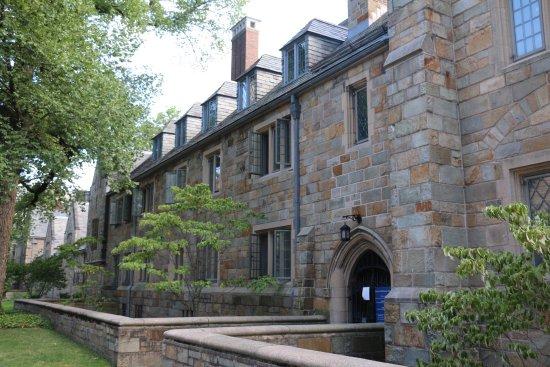 Yale University: 耶鲁大学