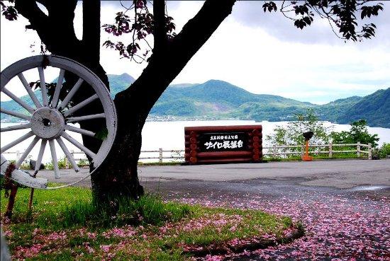 Sobetsu-cho, Japón: 洞爷湖