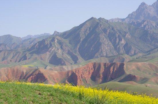 Qinghai, China: 卓尔山