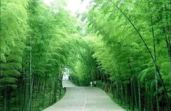 Zhouzhi County, Çin: 楼观道温泉酒店