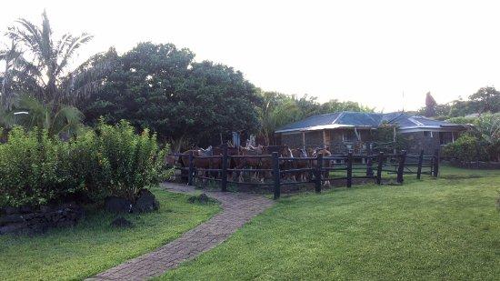Cabañas Pikera Uri: Very nice lodge! Right next to the Pacific.