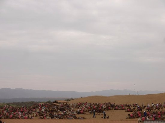 Zhongwei, China: 骑骆驼