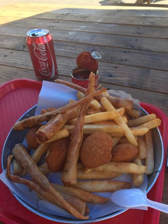 Te Anau Dairy: Bluecod Burger is fabulous, and in a big size. The deep fried scallops are really tasty with jui