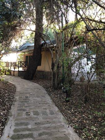 Mara Leisure Camp: photo0.jpg
