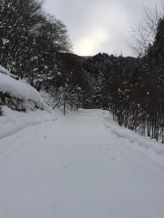 Hirayuotaki Fall: 冬天的瀑布
