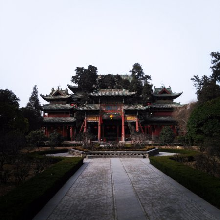 Yuncheng, China: 牌坊后的古树自然生长形成了一条龙(左起为首)的模样。