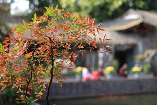 Foshan, Chine : 春节来游览,不输苏州留园。