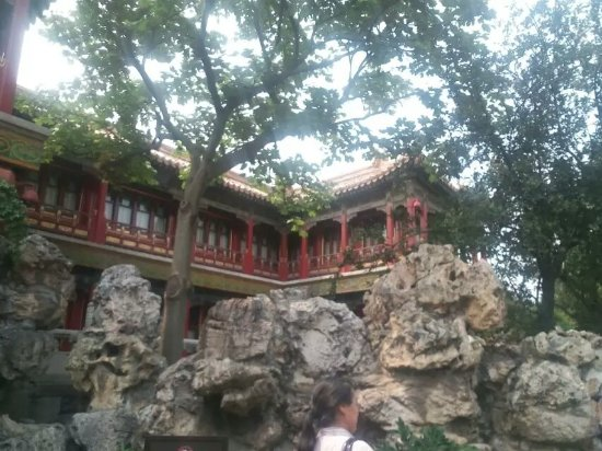 The Imperial Garden of The Palace Museum : 1486483492025_large.jpg