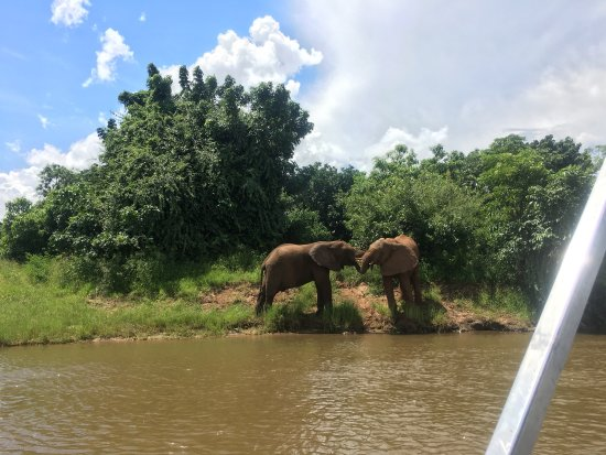 Lower Zambezi National Park, Zambia: Wonderful place with hospitable people, great service plus one water safari which renders u life