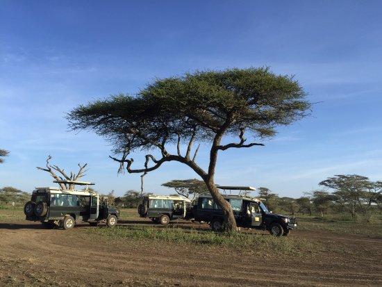 andBeyond Serengeti Under Canvas: photo1.jpg