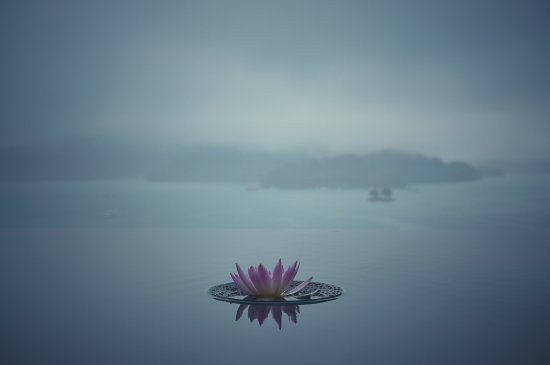 The Lalu Sun Moon Lake Resmi