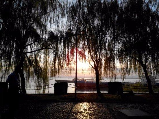 Yueyang, Chiny: 在夕阳和垂柳印沉下的洞庭湖还是很美的