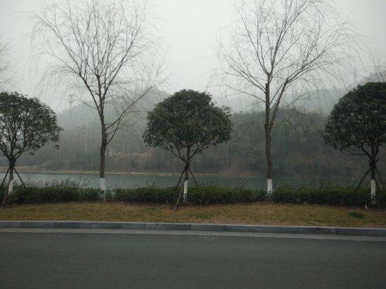 Anji County, Cina: IMG20170217113944_large.jpg