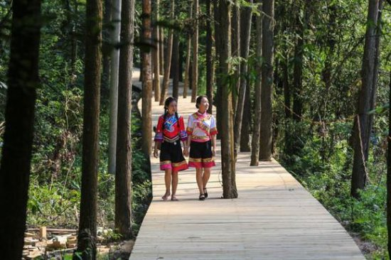 Longshan County, China: 乌龙山大峡谷